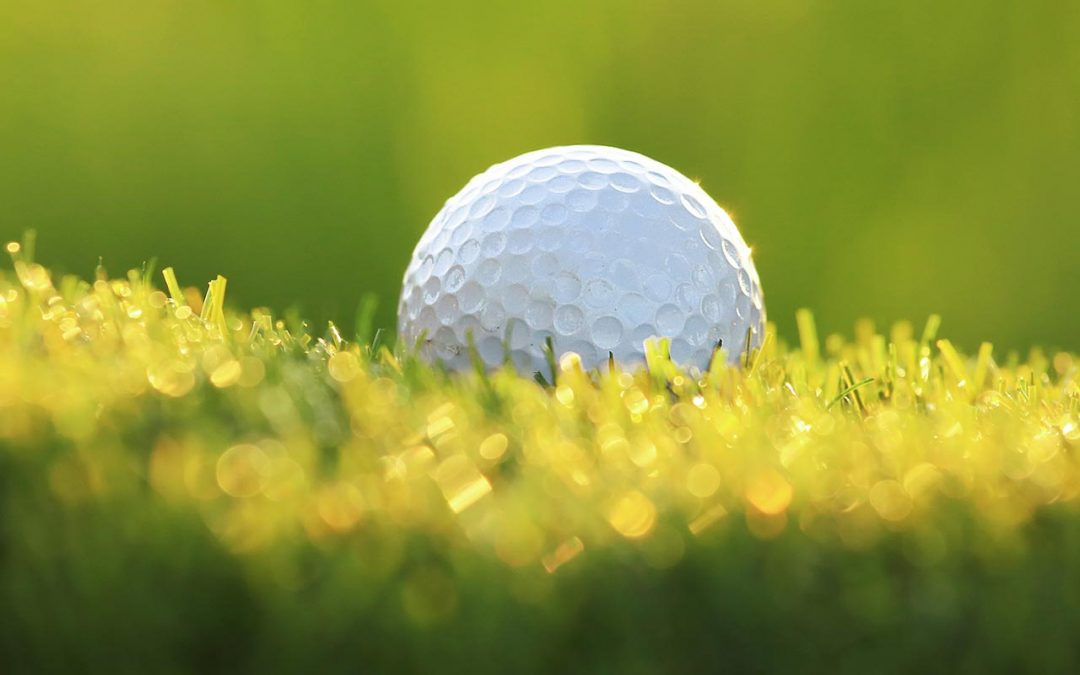 Golf Day Friday 3rd November
